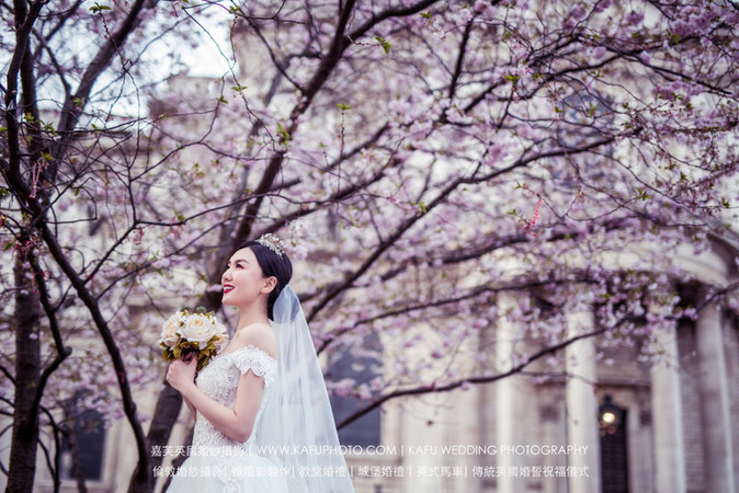 Cherry blossoms (5).jpg