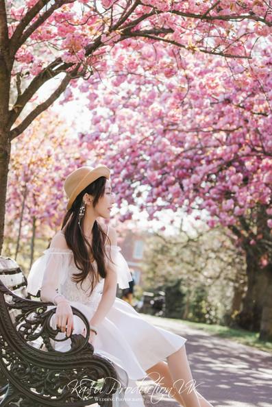 Cherry blossoms (39).jpg