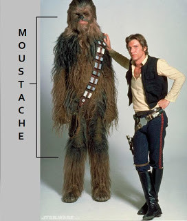 Chewbacca and His Awesomeness