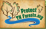 protect Tn Forests logo.jpg