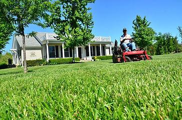 lawn-care-643556_960_720.jpg