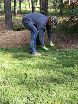 Sod Installation in Sunriver, OR