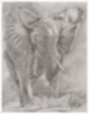 Kamena DeGrace Elephant original 11X14.5