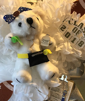 Custom Trainer Bear Homecoming