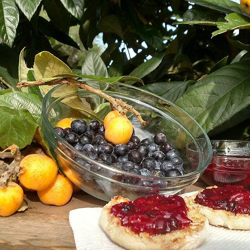Blueberry-Loquat Jam