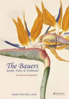 The Bauers