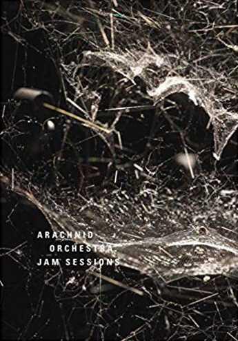 Tomas Saraceno: Arachnid Orchestra. Jam Sessions