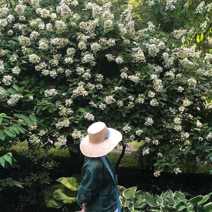 Woman in a straw sun hat in front of a bush filled with flowers
