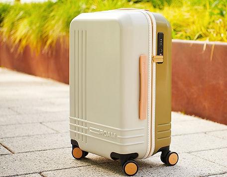 Roam-luggage.jpg