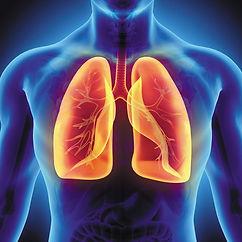 p4_LungsML0418_gi577938810.jpg