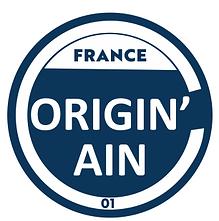 logo originain.PNG