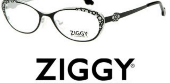 Ziggy Eyewear