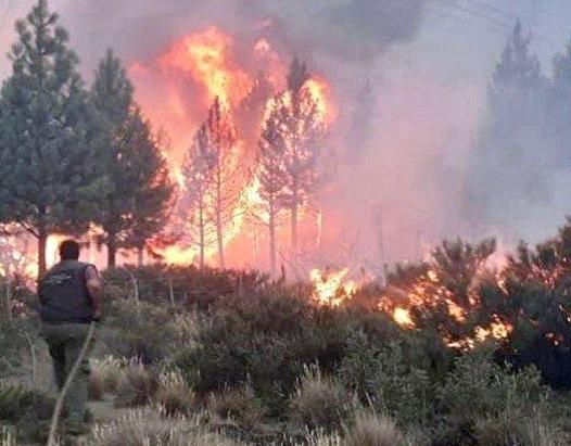 Es urgente  que se proceda a la apertura de paritarias de brigadistas de la Patagonia.
