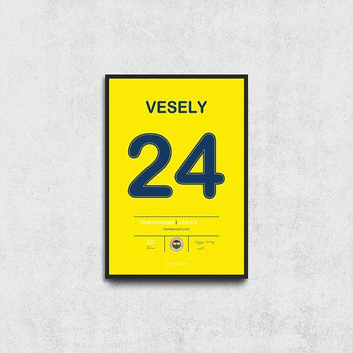 Jan Vesely Jersey