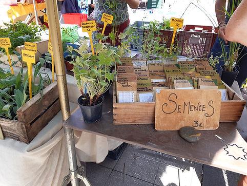 mercato mariglia semi.jpg