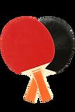 Tennis de Table à Lusignan - Association Pongiste Mélusine