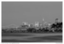san-fran-skyline.png