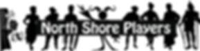 cropped-NSP-Header-Logo-6_edited.jpg