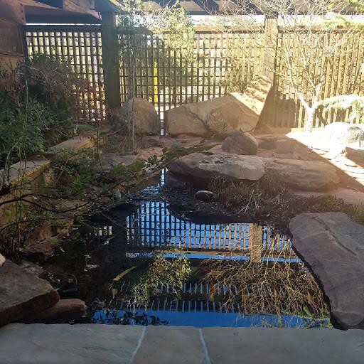 rock pond.jpg