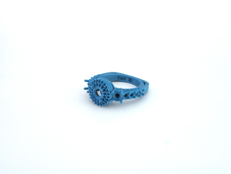 Ring 1.2.jpg