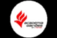logo para site - gavioes.png