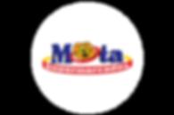 logo para site - mota.png