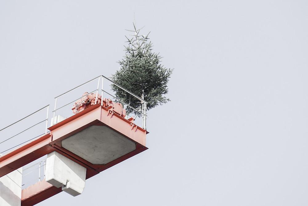 Weihnachtsbaum auf einem Baukran