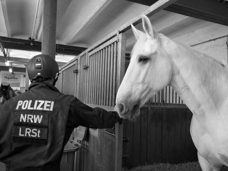 Gefährten –  besondere partnerschaftlichen Verbindungen zwischen Menschen und Tieren