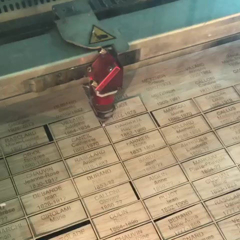 Découpe et gravure sur bois fin