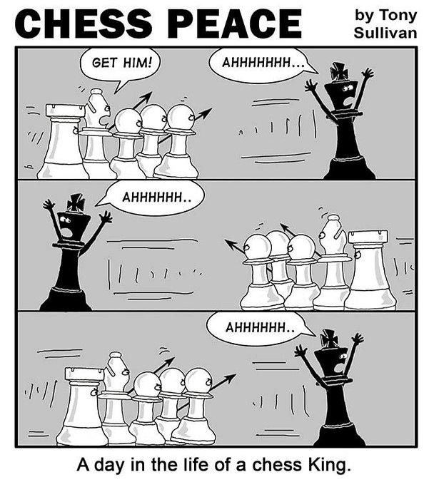 Chesspeacekingchase_edited.jpg