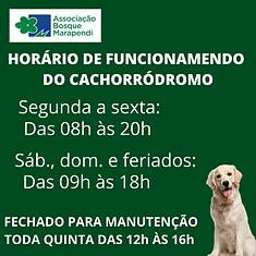 BOSQUE MONITORADO 24 HORAS22.png
