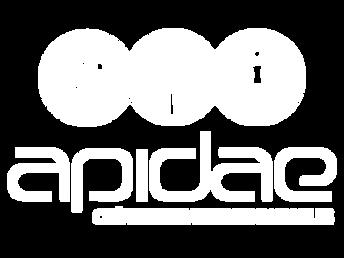Logo-Agence-Apidae.png