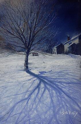 Winter's Shadow 2.jpg