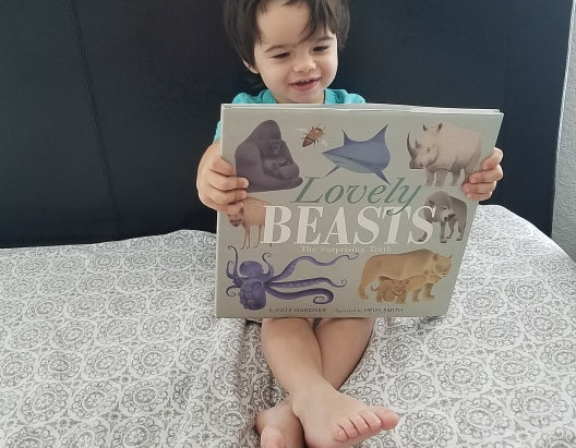 """Lovely Beasts: The Surprising Truth"" Review"