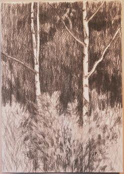 Maisema,29,5x20,5cm,hiili,1996