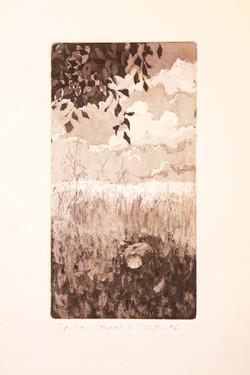 Paratiisi,21x11,5cm,kuivaneula,etsaus,1996