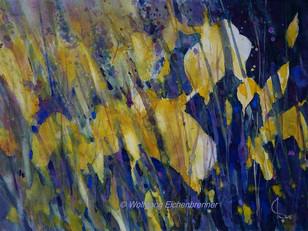 Sumpfiris, 2016, 45 x 32 cm, Aquarell