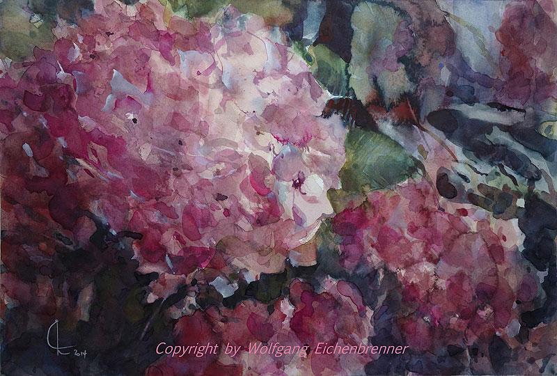 Hortensie, 2014 54 x 36 cm Aquarell