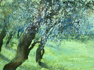 Obstbaumblüte III, 2013 46 x 34 cm Aquarell