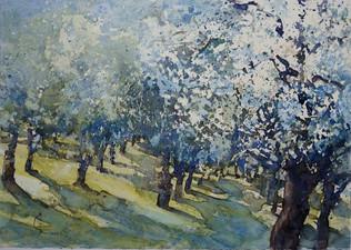 Obstbaumblüte, 2013, Aquarell
