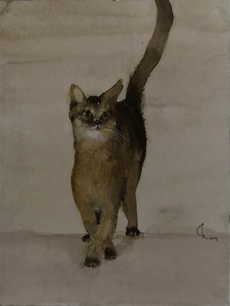 Catwalk, 2009 45 x 32 cm Aquarell