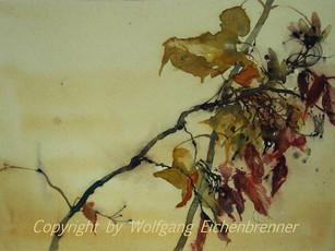 Herbstlich, 2007 45 x 32 cm Aquarell