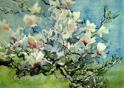 Magnolien, 2013 45 x 32 cm Aquarell