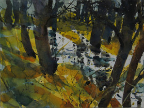 Bäume am Bach, 2007, Aquarell