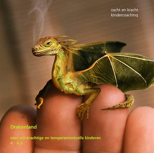 Waarom 'draakjes' zulke fantastische kinderen zijn.