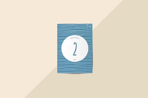 Kit 12 cartes étapes bébé collection Hello You Ciel bleu