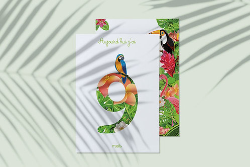 Kit 12 cartes étapes bébé collection Tropical jungle