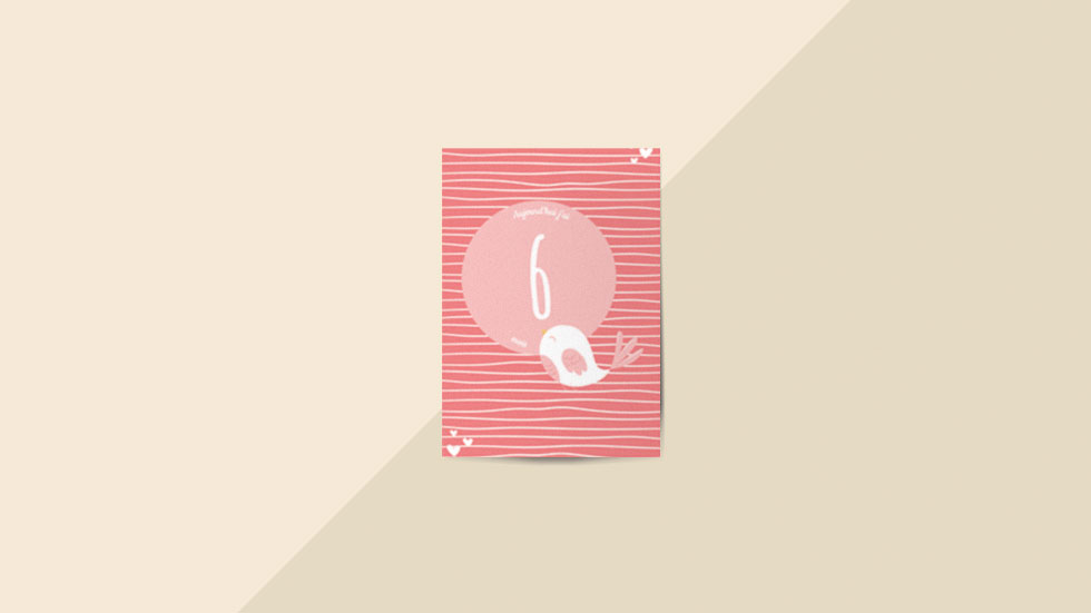 Kit 12 cartes étapes bébé collection Hello You Rose passion