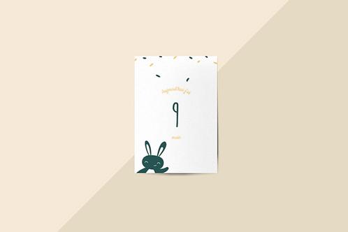 Kit 12 cartes étapes bébé collection Hello You Vert sauvage