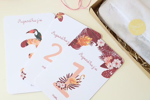 Kit 12 cartes étapes bébé collection Tropical jungle Rose